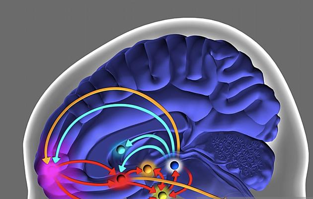 Alzheimer & Brain Awareness month